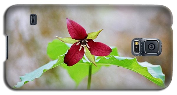 Red Trillium Galaxy S5 Case