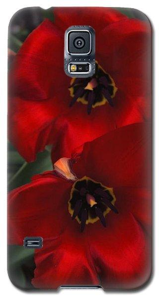Red Tulip Pair Galaxy S5 Case