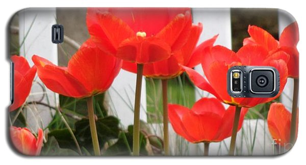 Galaxy S5 Case featuring the photograph Red Tulips At Fence by Christina Verdgeline