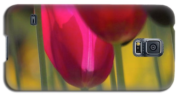 Red Tulips Galaxy S5 Case