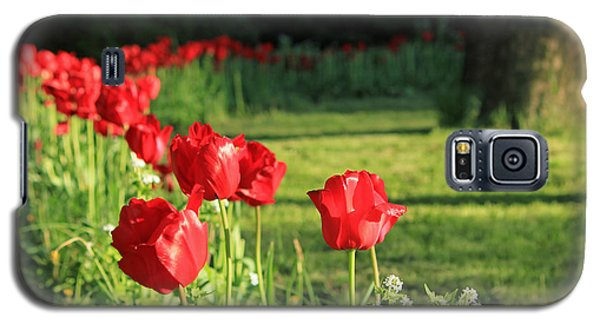 Galaxy S5 Case featuring the photograph Red Tulips by Jose Oquendo