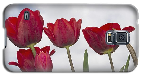 Red Tulips Galaxy S5 Case by Wanda Krack