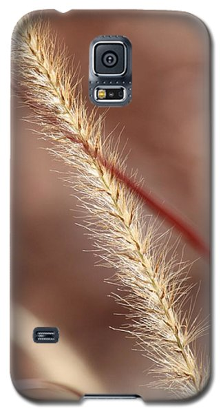 Galaxy S5 Case featuring the photograph Red Winds by Amy Gallagher