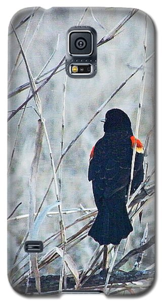 Galaxy S5 Case featuring the digital art Red Wing Perched by Lizi Beard-Ward