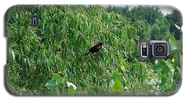 Galaxy S5 Case featuring the photograph Red-winged Blackbird by Deborah DeLaBarre