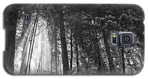 Red Woods 2 Galaxy S5 Case