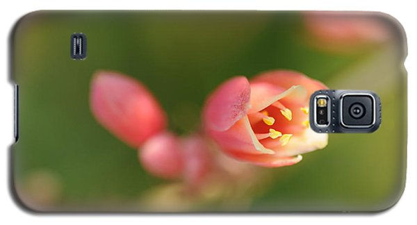 Red Yucca Flower Galaxy S5 Case
