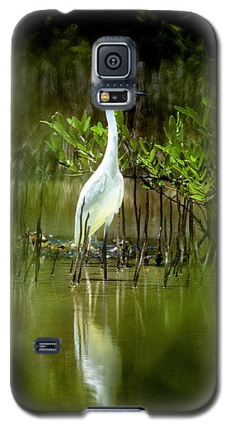 Galaxy S5 Case featuring the photograph Reddish Egret 9c by Gerry Gantt