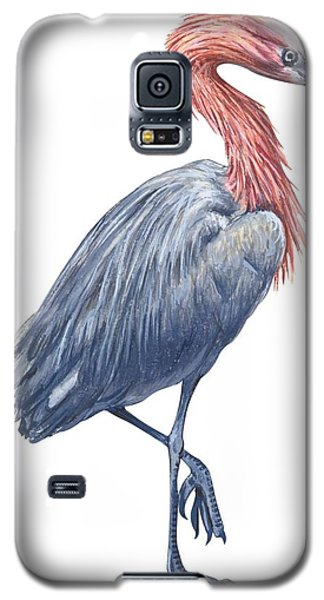 Reddish Egret Galaxy S5 Case by Anonymous