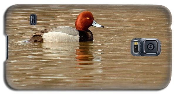 Redhead Duck Galaxy S5 Case