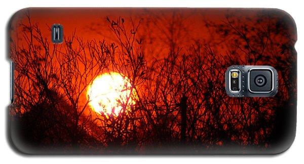 Redorange Sunset Galaxy S5 Case by Matt Harang