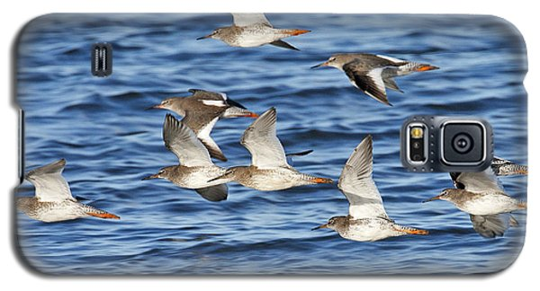 Galaxy S5 Case featuring the photograph Redshank On The Wing by Paul Scoullar