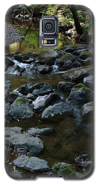 Redwood Creek Galaxy S5 Case