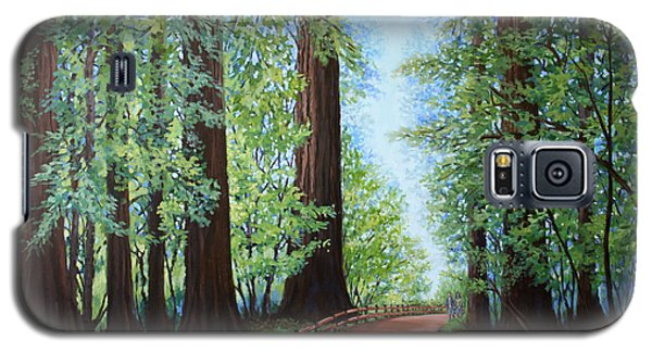 Redwood Forest Path Galaxy S5 Case by Penny Birch-Williams