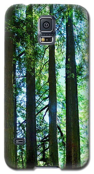 Redwoods Galaxy S5 Case