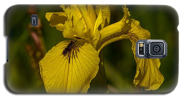 Reed-mace June 2013 Galaxy S5 Case by Leif Sohlman
