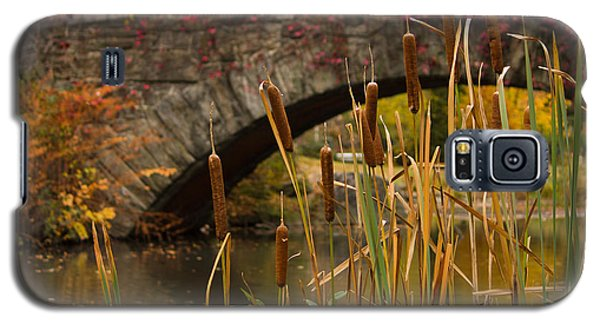 Galaxy S5 Case featuring the photograph Reeds And Gapstow Bridge by Jose Oquendo