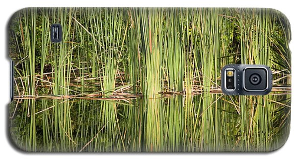 Reeds Of Reflection Galaxy S5 Case