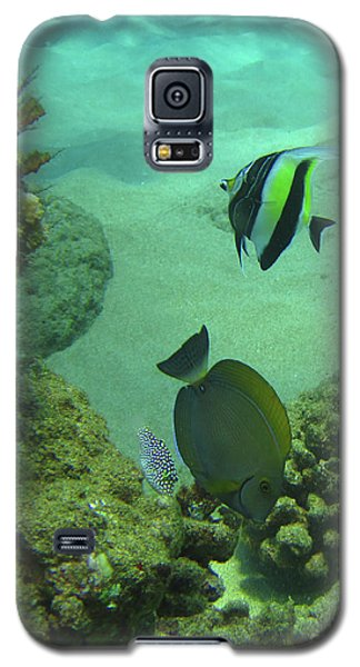 Reef Life Galaxy S5 Case by Suzette Kallen