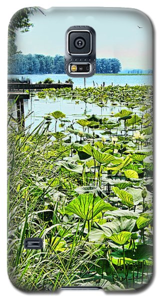 Reelfoot Lake Lilly Pads Galaxy S5 Case