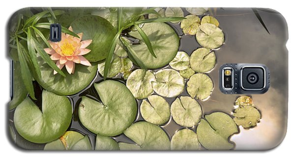 Reflected Light Upon Flowering Water Lilies Galaxy S5 Case