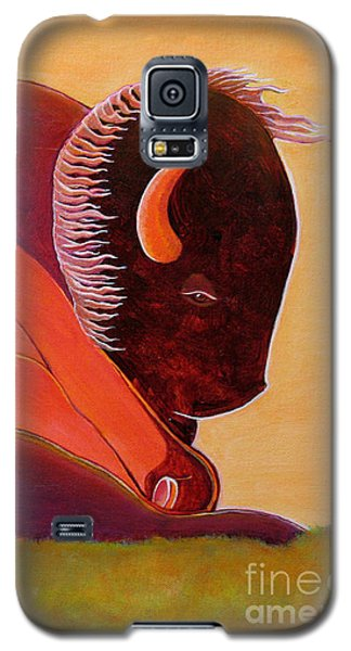 Reflecting Buffalo Galaxy S5 Case