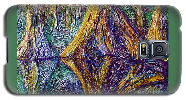 Reflecting On The St. Johns River Galaxy S5 Case