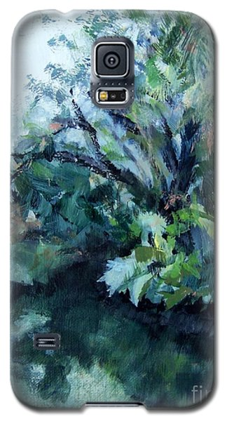 Galaxy S5 Case featuring the painting Reflection by Mary Lynne Powers