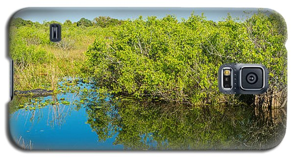 Reflection Of Trees In A Lake, Anhinga Galaxy S5 Case