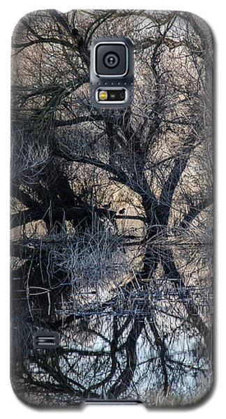 Galaxy S5 Case featuring the photograph Reflections by Brian Williamson
