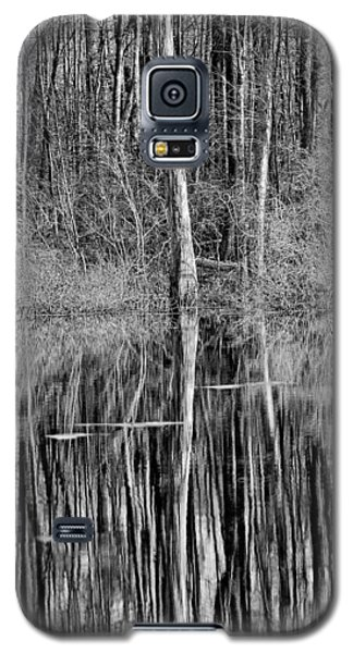 Reflections Of A Swamp Galaxy S5 Case