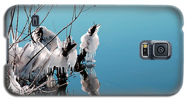 Galaxy S5 Case featuring the photograph Reflections On Ice by Linda Cox