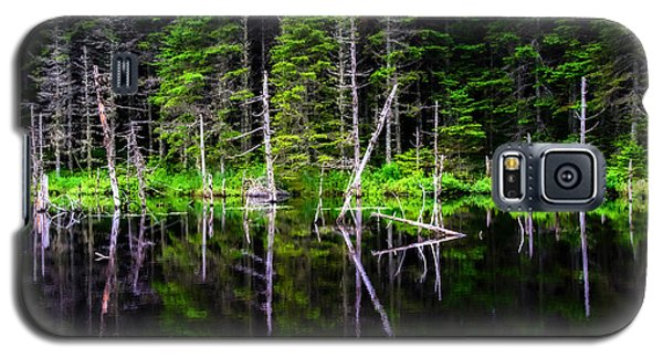 Reflections On The Pond Galaxy S5 Case by Marion McCristall