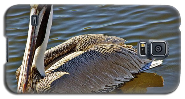 Galaxy S5 Case featuring the photograph Reflective Pelican by Alice Mainville