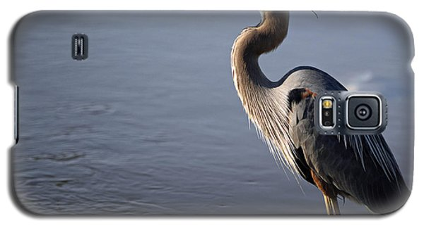Galaxy S5 Case featuring the photograph Regal Bird by Tamera James