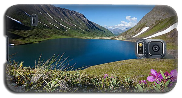Regal Day At Ship Lake Galaxy S5 Case