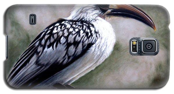 Regal Hornbill Galaxy S5 Case