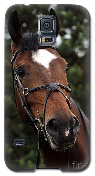 Regal Horse Galaxy S5 Case