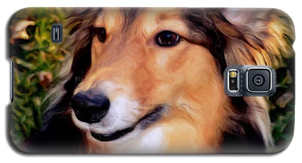 Galaxy S5 Case featuring the photograph Dog - Collie - Regal Shelter Dog by Luther Fine Art