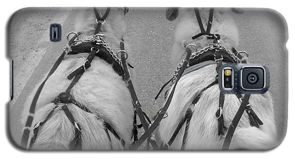 Reins In Hand Galaxy S5 Case