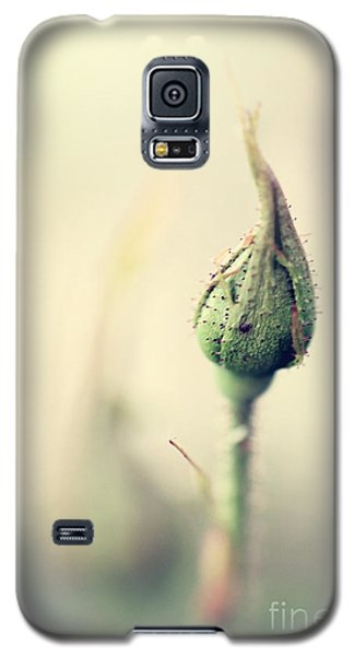 Remember Galaxy S5 Case by Trish Mistric