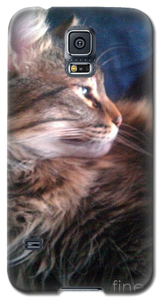 Galaxy S5 Case featuring the photograph Remembering Bo by Jacqueline McReynolds