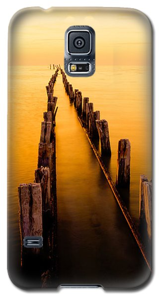 Remnants Galaxy S5 Case by Chad Dutson