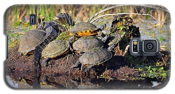 Reptile Refuge Galaxy S5 Case