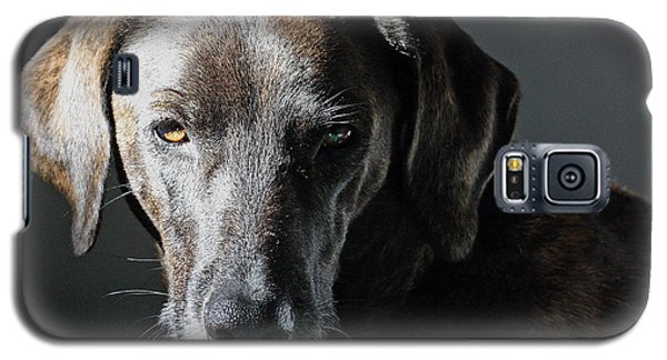 Galaxy S5 Case featuring the photograph Rescue Dog - Osa by Peggy Collins