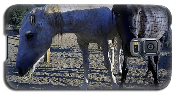 Rescued Mustangs Galaxy S5 Case