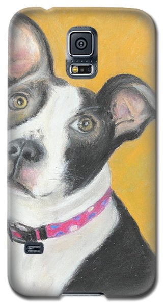 Rescued Pit Bull Galaxy S5 Case