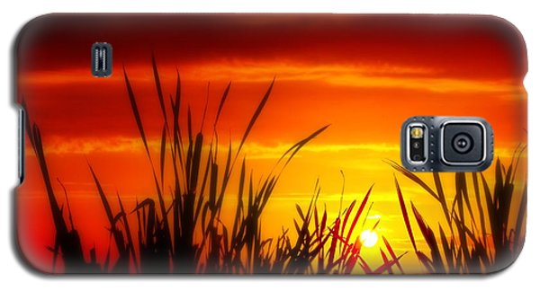 Reservoir Sunset Tall Grass Galaxy S5 Case