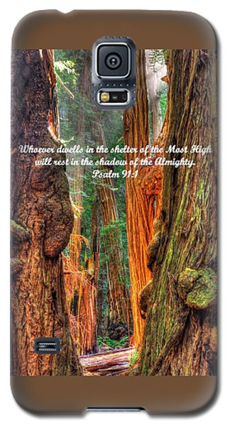 Rest In The Shadow Of The Almighty - Psalm 91.1 - From Sunlight Beams Into The Grove At Muir Woods Galaxy S5 Case