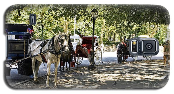 Rest Stop - Central Park Galaxy S5 Case by Madeline Ellis